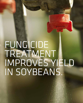 4 Reasons to Consider Fungicide Treatments